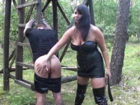 Im Wald bestraft
