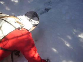 Sklave als Hund durch den Wald auf Suche geschickt