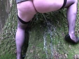 Einen Baum markiert